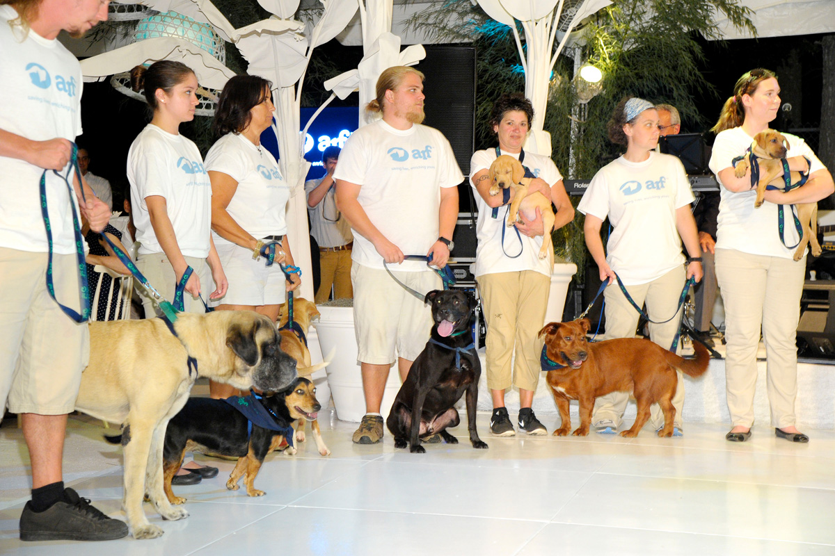 Animal Rescue Fund Team==Animal Rescue Fund of the Hamptons Bow Wow Meow Ball== Animal Rescue Fund Of The Hamptons, Wainscott==August 20, 2016==©Patrick McMullan==Photo: PatrickMcMullan/PMC====