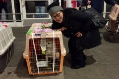 ARF volunteer Kim Littlefield escorted the dogs from China to JFK Airport.