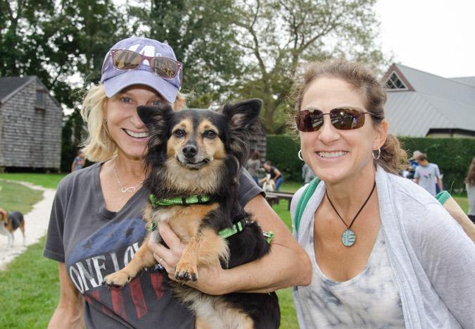 Dog Walk Animal Rescue Fund Of The Hamptons