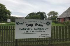 Dog Walk 2017