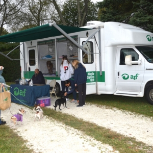 It's all for the animals! The mobile adoption van was on site.