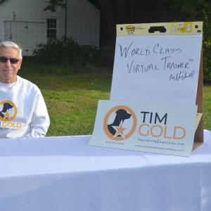 Tim Gold Dog Training - Sponsor