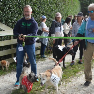 Majo Prazenec and his dog Buddy, last year's top fundraiser, cuts the ribbon this year.