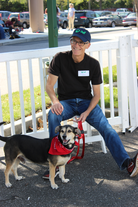 Volunteer Mark Watson helps to hold someone's dog while they look for another canine companion.