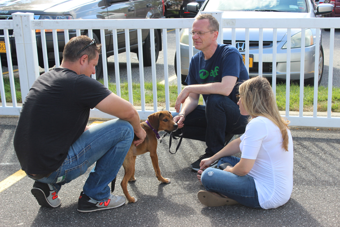 ARF's Scott Howe helps to show one of the adoptable dogs.