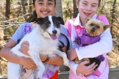 Kids-and-dogs-crop